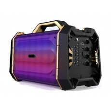 Wansa Portable Wireless Bluetooth Speaker (TS-222) - Black