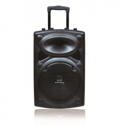 Magicstar BB112 Bluetooth Trolley Speaker 12-inch with Dual Charging Option - 100W