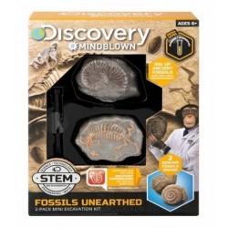 Discovery Toy Excavation Kit Mi