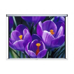 Anchor Manual Projector Screen - 1.5m x 1.5m - Matte White - ANSWM150