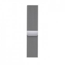 Apple 41mm loop silver