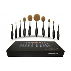 Master Professional Oval Makeup Brushes Set 10 Pieces Set