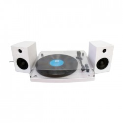 Bluetooth Turntable with 2 Speakers