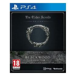 The Elder Scrolls Online Collection: Blackwood PS4 Game in Kuwait | Buy Online – Xcite