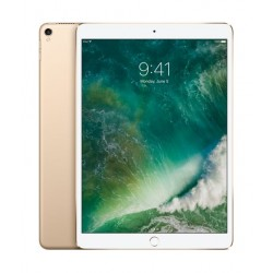 Apple Ipad Pro 10.5 Inches 256 GB Wifi Tablet - Gold
