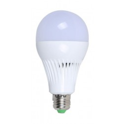 RTC LED 7 Watts Light Bulb (36-1-1089)