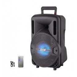NHE 1000W 8-inch Wireless Bluetooth Trolley Speaker (LIGE-X1) - Black