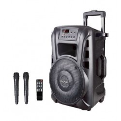 Wansa 100W Bluetooth Trolley Speaker with USB Connection (TN15)