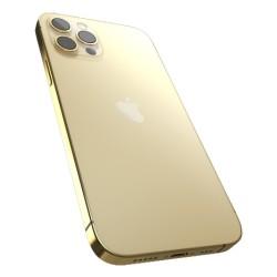 Givori iPhone 12 Pro Max 256GB Gold Frame - Silver
