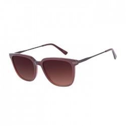 Chilli Beans Bossa Nova Dark Brown Sunglasses - OCCL3196