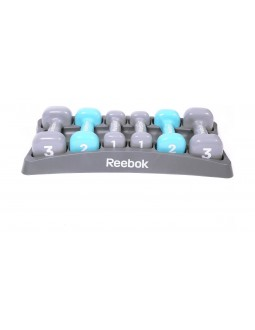Reebok Dumbbell Set With Case (RAWT-11156) - Blue/Grey