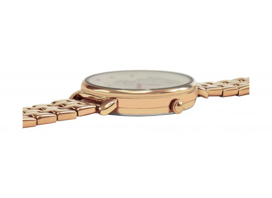 Alba 36mm Ladies Analog Metal Fashion Watch - AP6670X1