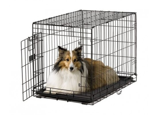Medwest 36-inch Homes For Pets Life Stages ACE Dog Crate