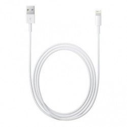 Apple MD819ZM/A Lightning USB Cable – 2M