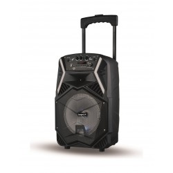 Impex TS-25B 25 W Multimedia Portable Trolley Speaker