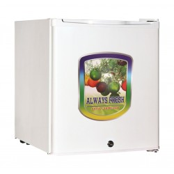 Basic 1.6 Cft Single Door Refrigerator (BRS-65L)