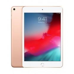APPLE iPad Mini 5 7.9-inch 256GB 4G LTE Tablet - Gold 1