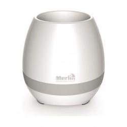 Merlin Musical Plant - 93637