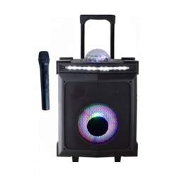 Magic Star Trolley Speaker with Wireless Connectivity (BBX170X) - Black
