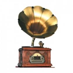 EQ Gramophone Turntable BT/USB/AM/FM (411A)