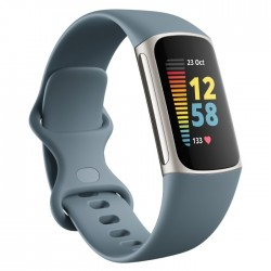 Fitbit Fitness Tracker Blue Platinum Stainless Steel silicon buy in xcite Kuwait