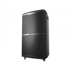 Wansa 15-inch Bluetooth Portable Speaker - TBG15K