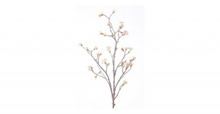 Maple Light Pink Fruit Branch
