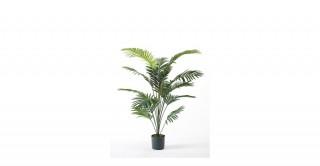 Palm Paradise 150Cm Trees