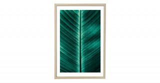 Leaf 45X65Cm Framed Art