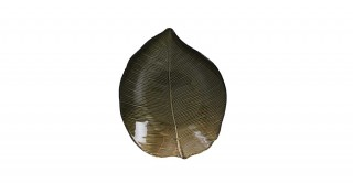 Leaf Centerpiece Plate Green 28  x  23  x  3.5 cm