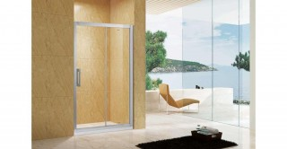 Austin Shower Door
