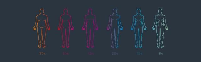 Body Fat Percentage & Body Shape