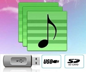 USB/SD Card Playback & AUX Input