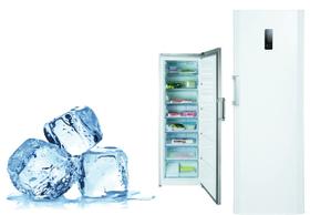 Frost Free Freezer