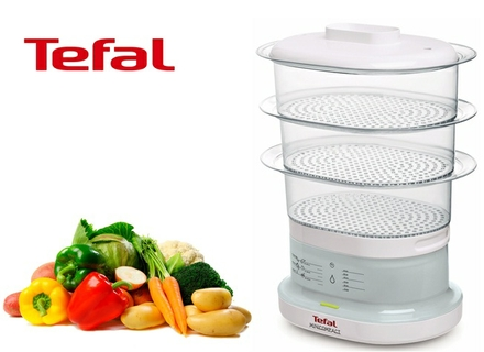 tefal mini compact steamer instructions