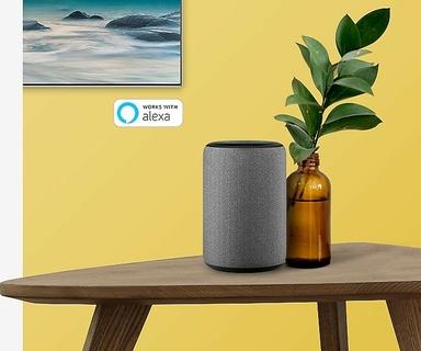 Amazon Alexa Smart Speakers