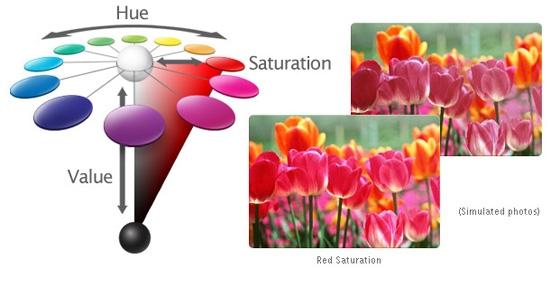 إدارة الألوان ثلاثية الأبعاد من توشيبا