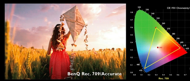 Rec.709 for Color Accuracy