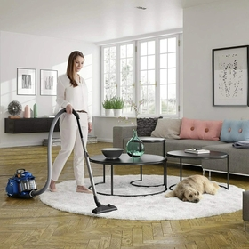 Banish Dust out of Your House