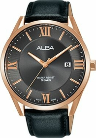 Alba Gents Elegant Watch