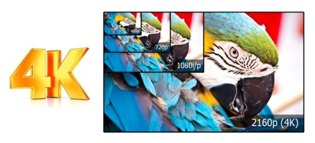 Experience the 1080p Display  That Captures Every Detail