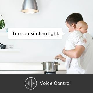 التحكم الصوتي