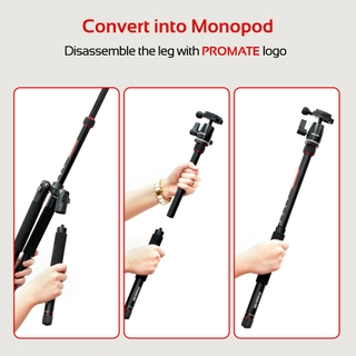 Monopod Convertible