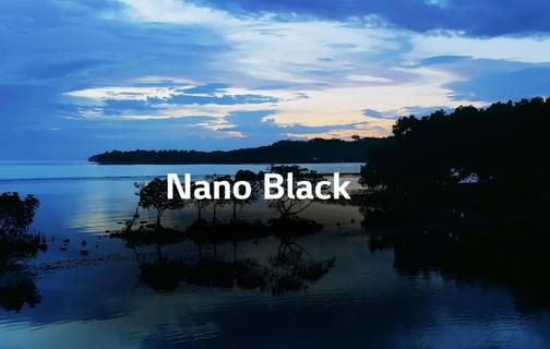 Nano Black