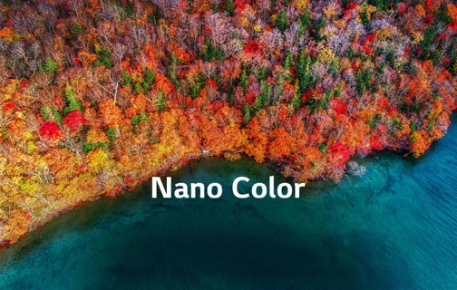 Nano Color