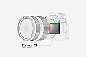24.2MP Exmor R BSI CMOS Sensor and BIONZ X Image Processor