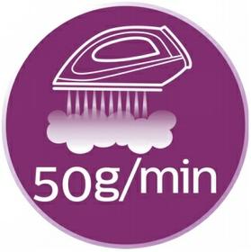 Steam up to 50 g/min