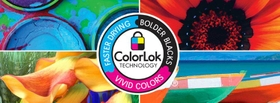 ColorLok Symbol Potrays Colors Deep and Rich