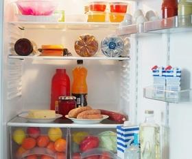 Wansa Compact Refrigerator