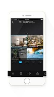 Mobile monitoring via mobile application